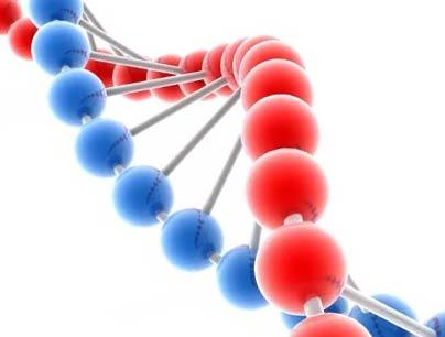 25 апреля - праздник «День ДНК»