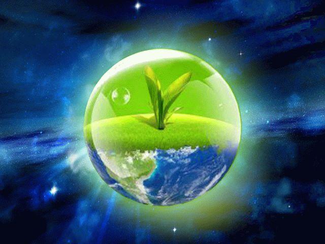 Праздник День эколога