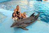 Праздник 23  августа - Всемирный день китов и дельфинов