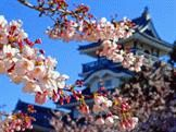 23 сентября - День осеннего равноденствия в Японии